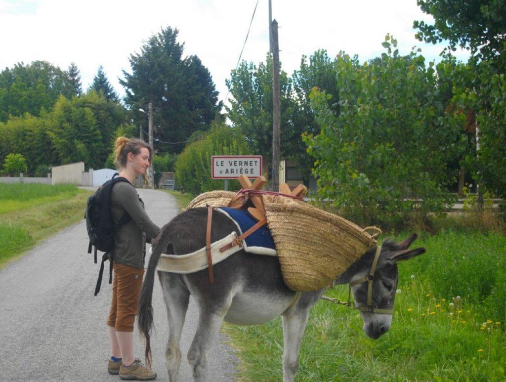 Balade d'ânes Ariège